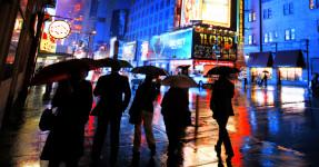 6 Umbrellas