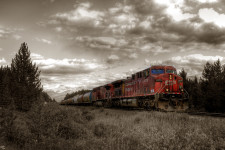 Canmore Train Sepia