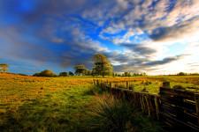 Kinmount field