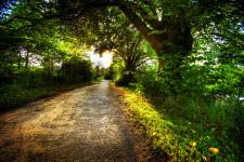Road to Annan